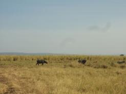 fotos Tanzania 204