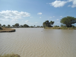 fotos Tanzania 237