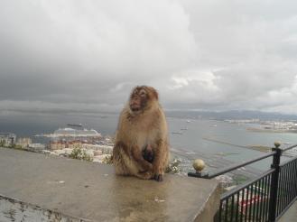 , fotos patagonia, barcelona, gibraltar 2016 281