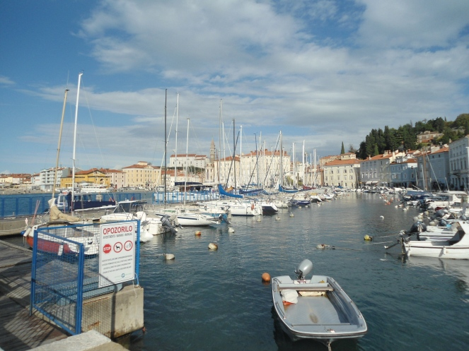 fotos-mediterraneo-2016-392